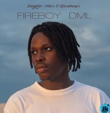fireboy-dml